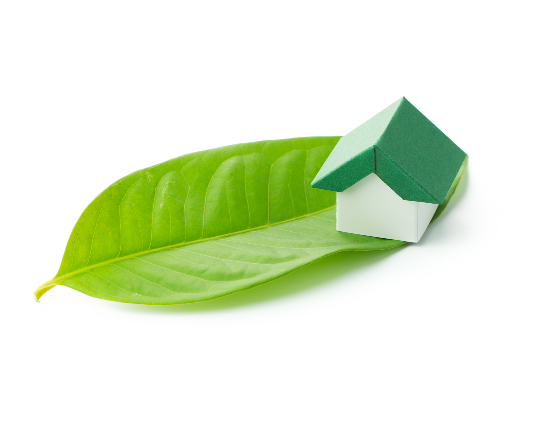 Green Homes Grant Image